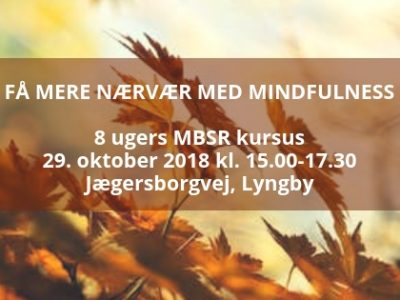 mindfulness lyngby