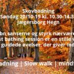 Skovbad oktober 219
