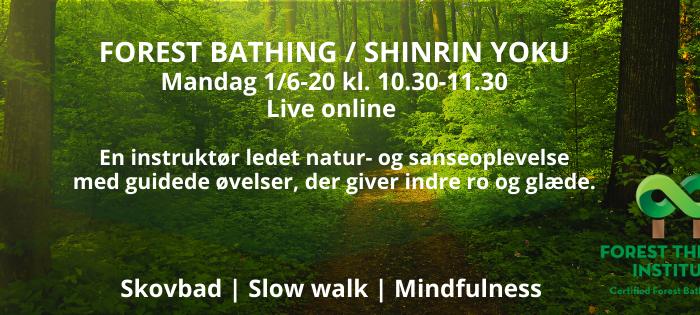 Skovbadning Danmark